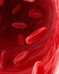 каким лекарством можно почистить организм от паразитов